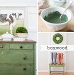 Boxwood Milk Paint Quart