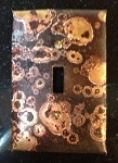 Fossil Single Electrical Switch Cover