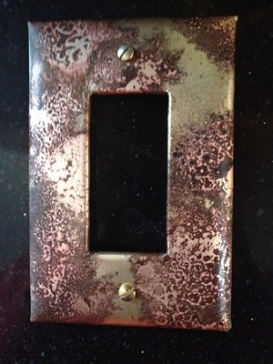 Fossil Single Rocker Electrical Switch Cover