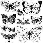 Iron Orchid Designs Butterflies Decor Stamps (12x12)