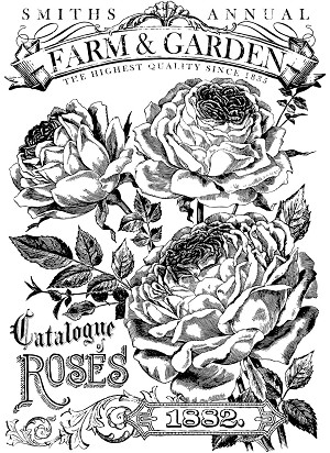 Catalogue of Roses Paintable Transfer (24x33)