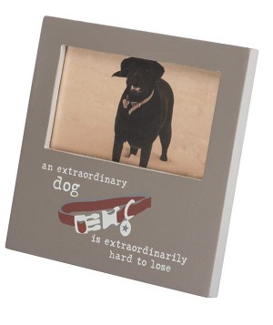 Extraordinary Dog Plaque